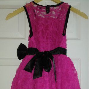 Hot Pink Roses and Ruffles Dress